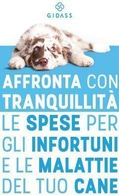assicurazione sanitaria cane di GIDASS
